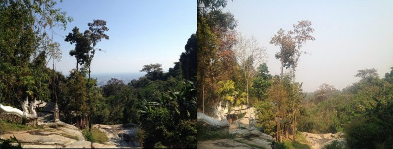 The Chiang Mai Burning Season, Should You Avoid It?