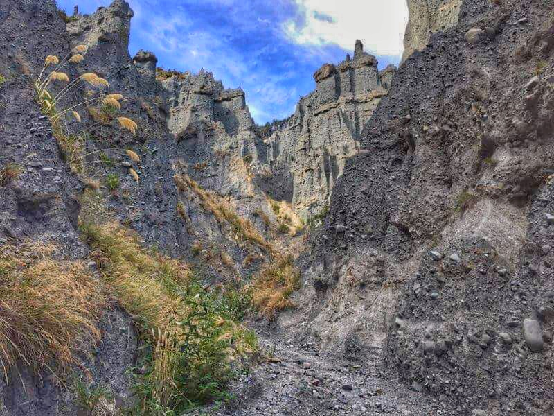 must do on new zealand road trip