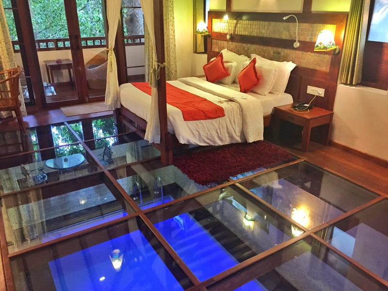 honeymoon pool villa resort munnar kerala india