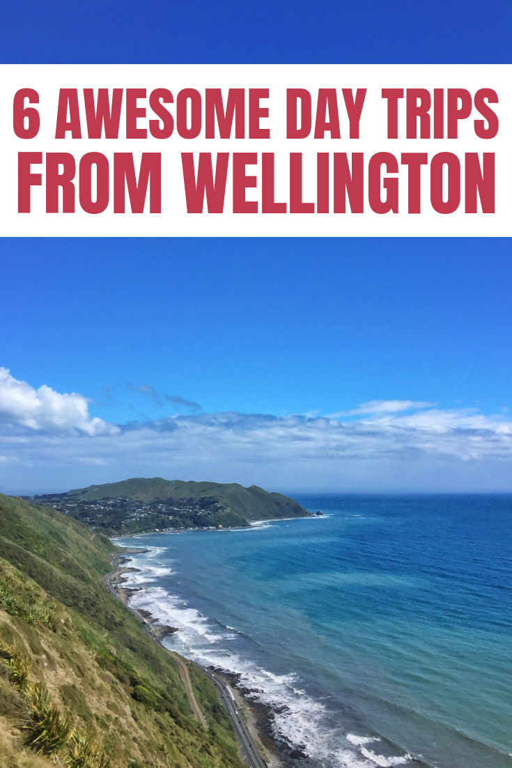 view from a Wellington day trip to Paekakariki