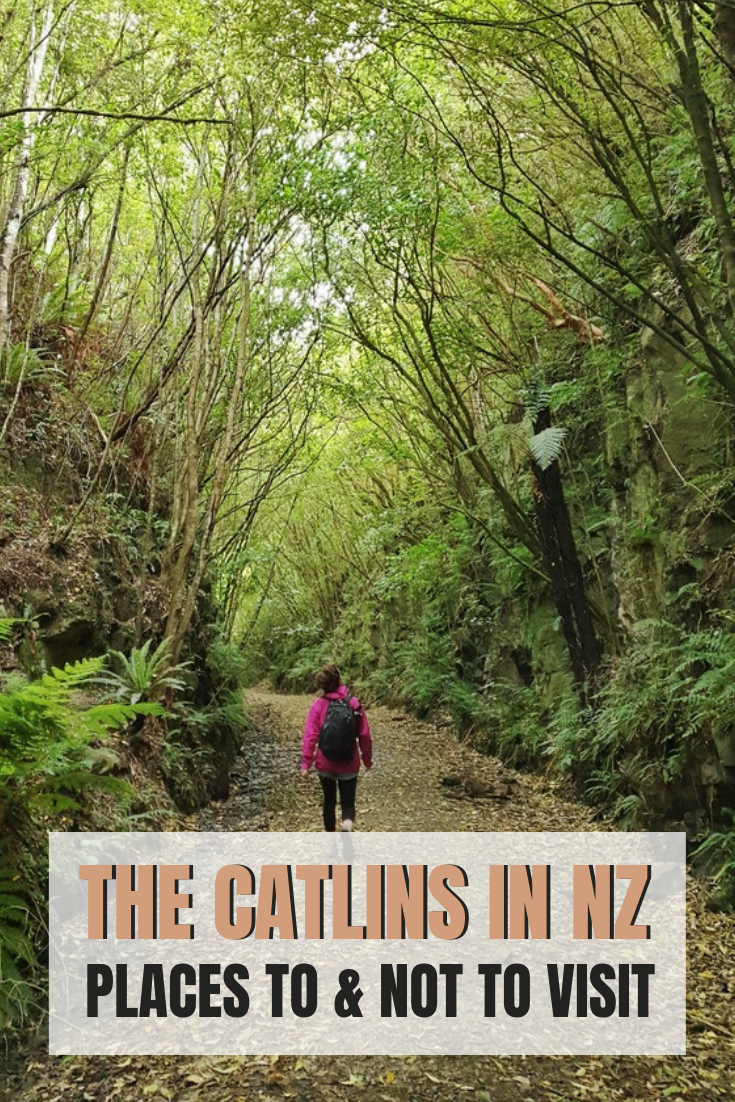 things to do in the catlins