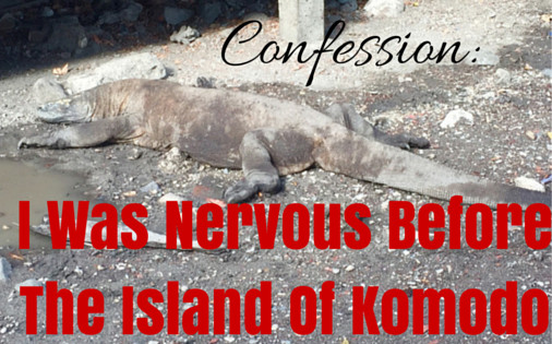 I Was Nervous Before Visiting The Island Of Komodo