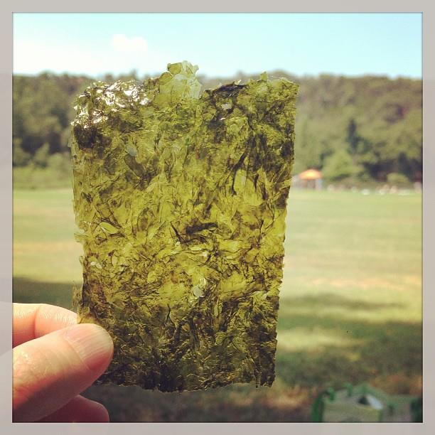 seaweed is a good travel snack