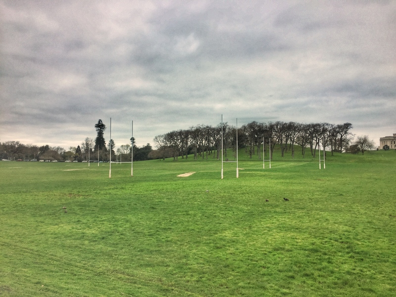 auckland domain rugby fields