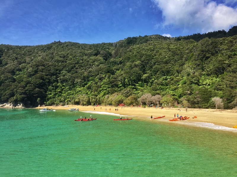 abel tasman national park day trips
