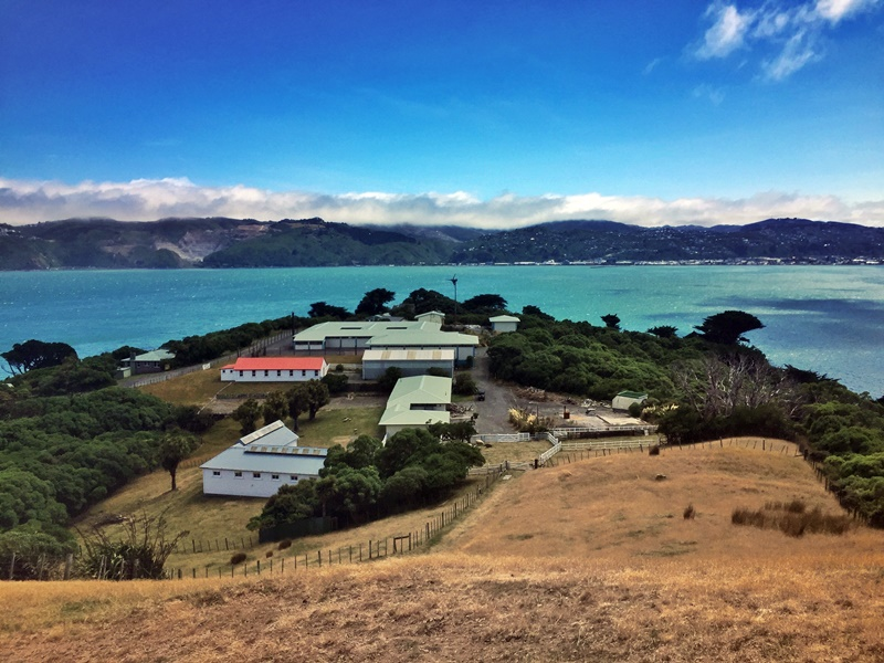 somes island view