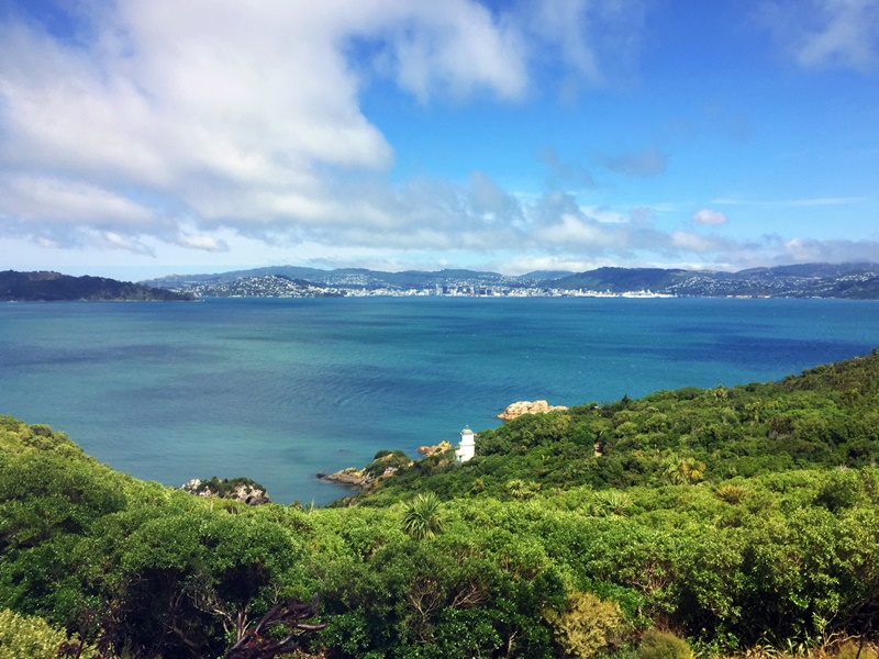 somes island view point